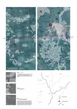 Deforestation patterns and their primary causes in the Peruvian Amazon. By ZHANG Zihui Ffion, 2014.