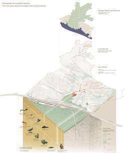 Green Belt, Grey Belt? Non-zoned approaches to landscape evaluation and management in Hong Kong. By LI Man Hei Bernice, 2016.