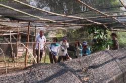 HKU Landscape students at coffee nursery of UPLAO Agricultural Promotion Company, Luang Namtha, Laos. By Ashley Scott Kelly, 2019.