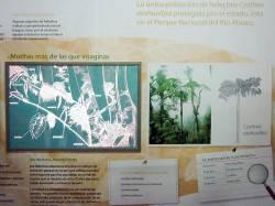 Rio Abiseo Interpretation Center. By Ashley Scott Kelly, 2012.
