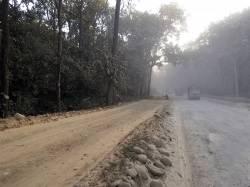 Road upgrades in Tikauli Jungle, Chitwan National Park Buffer Zone. By Ashley Scott Kelly, 2016.