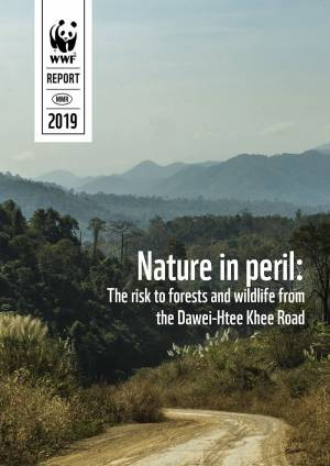 Nature in peril: The risk to forests and wildlife from the Dawei-Htee Khee Road, 2019.