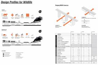 The Design Manual compiles detailed profiles of 20 threatened or endemic species typical of the project area, including critical behavioral aspects and dimensions necessary for infrastructure and mitigation design along the length of the Dawei Road Link, 2016.